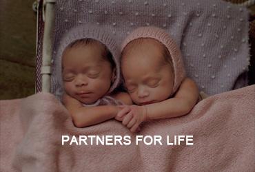 partnersforlife
